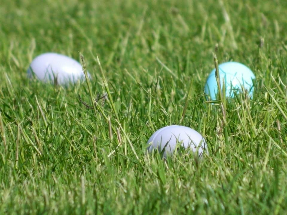Schedule of Easter Egg Hunts
