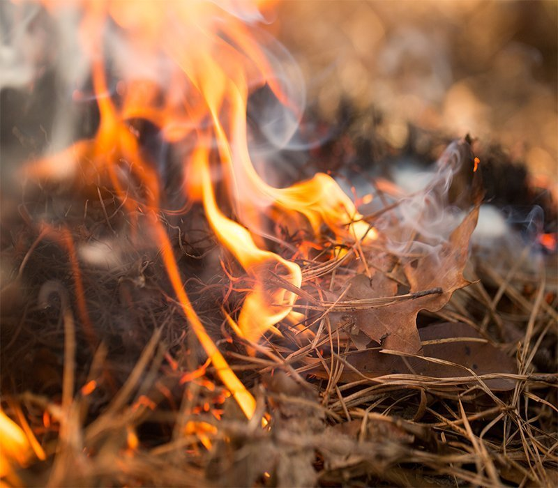 Discarded Cigarette's The Cause Of Two Brush Fires In Mohave Valley