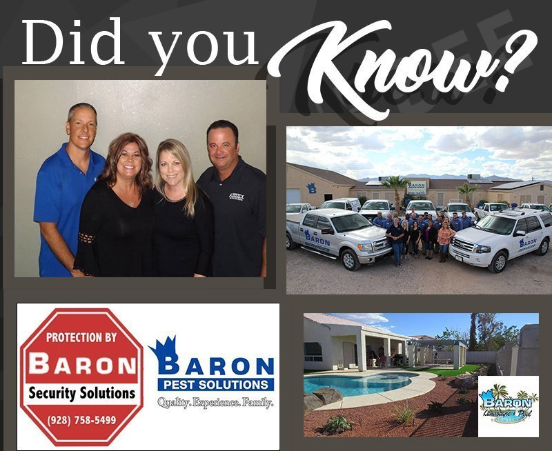 Did You Know-Baron Services