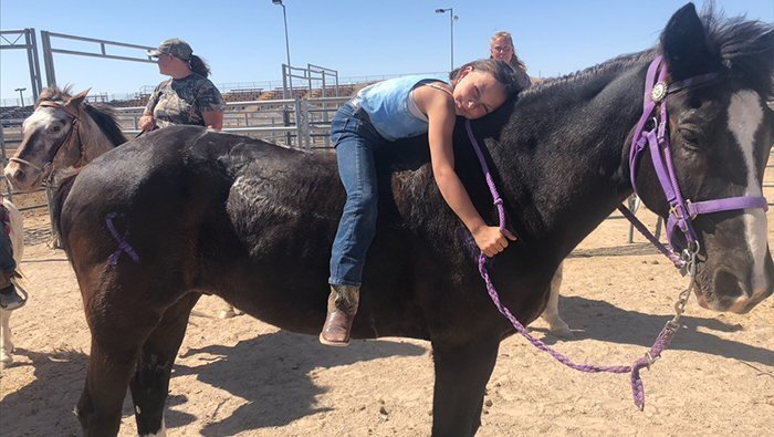 "Girl's Loss Of Horse Kicks Off ""Rally Around Aly"" Fundraiser"