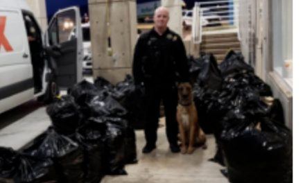 ADOT – Officers aided by K9 seized 1,113 lbs of marijuana in fake delivery van.